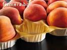 Подложки за свежи плодове Пловдив